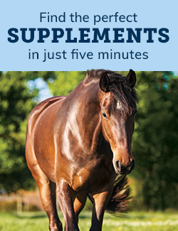 Find the perfect supplements in under five minutes