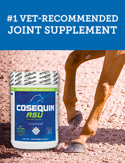 Number one vet-reccommended joint supplement