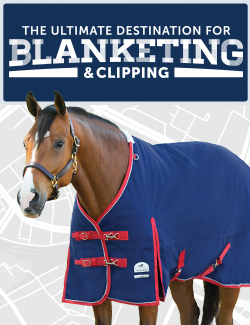 The Ultimate Destination for Blanketing and Clipping