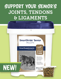 Support your senior's joints, tendons & ligaments