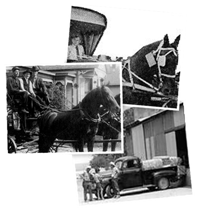 History of Farrier's Magic