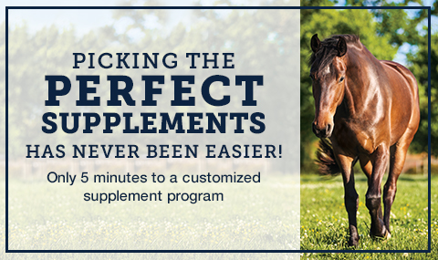Picking the perfect supplements has never been easier
