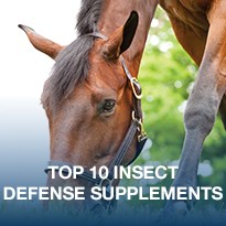 Top 10 Insect Defense Supplements