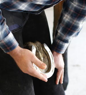 Image of a man inspecting a horses hoof