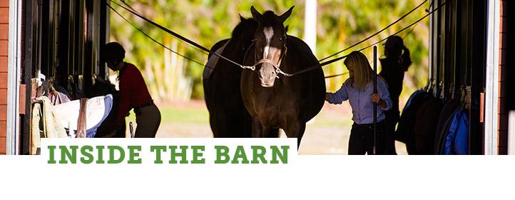 Zone: Inside the Barn