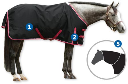 Parts of Horse blankets. 1. surcingles 2. shoulder gussets 5. hood/neck cover