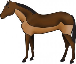horse with trace clip