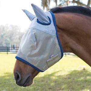 Horse wearing a flymask with UV protection to help protect his eyes.