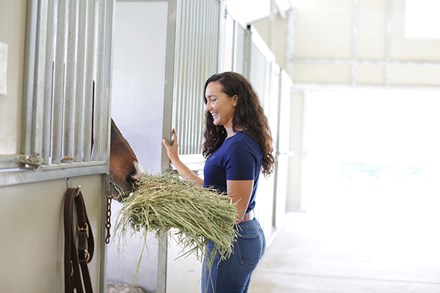A woman giving a horse hay in its stall.