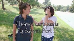 Fly Season, Part 2