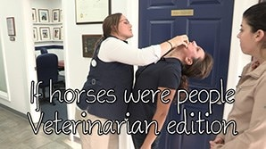 If horses were people - Veterinarian Edition