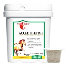Accel Lifetime