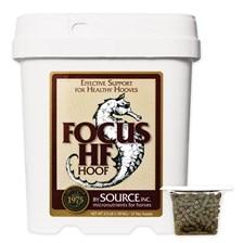 FOCUS HF