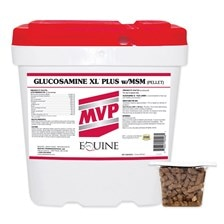 Glucosamine XL Plus w/MSM
