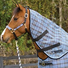 Kensington Protective Neck Rug