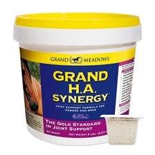 Grand HA Synergy
