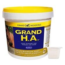 Grand HA