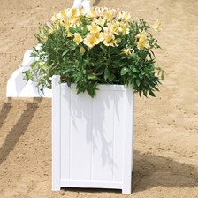 Dressage Arena Flower Box