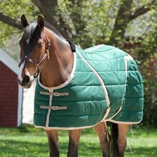 Blue Ribbon Custom Quilted Stable Blanket