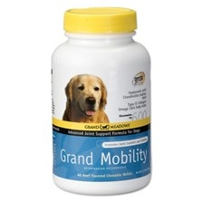 Grand Mobility for Dogs