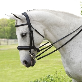 Antares Double Bridle