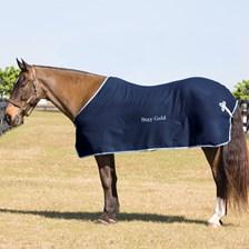 Wool Dress Sheet