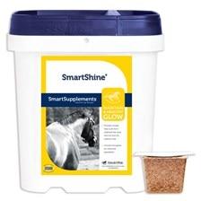 SmartShine® Original - Clearance!