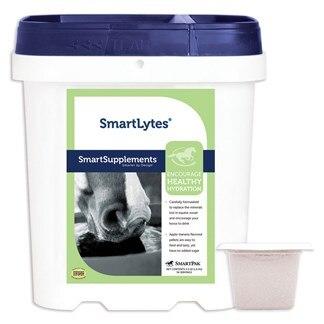 SmartLytes® Powder