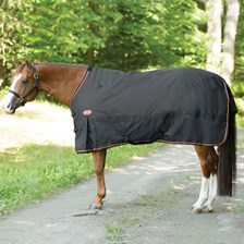 Big D Magnum Heavy Turnout Blanket