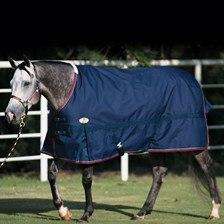 Big D Devlyn Heavy Turnout Blanket