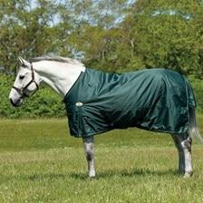 Big D Sussex Medium Turnout Blanket