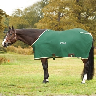 Big D Nylon Stable Sheet - Clearance!