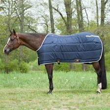 Big D Kodiak Insulated Blanket