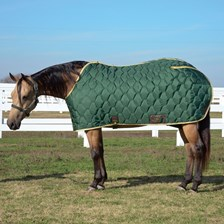 Big D All American Blanket