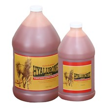 Hyaluronex Liquid