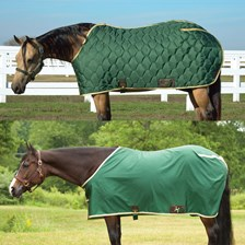 Big D All American Stable Blanket and Nylon Sheet Set