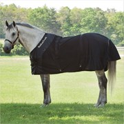 Therapeutic Horse Blankets