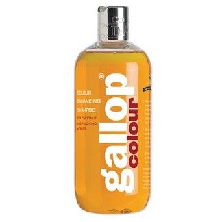 Gallop Color Enhancing Shampoo