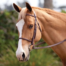 Plymouth® Basic Hunter Bridle by SmartPak