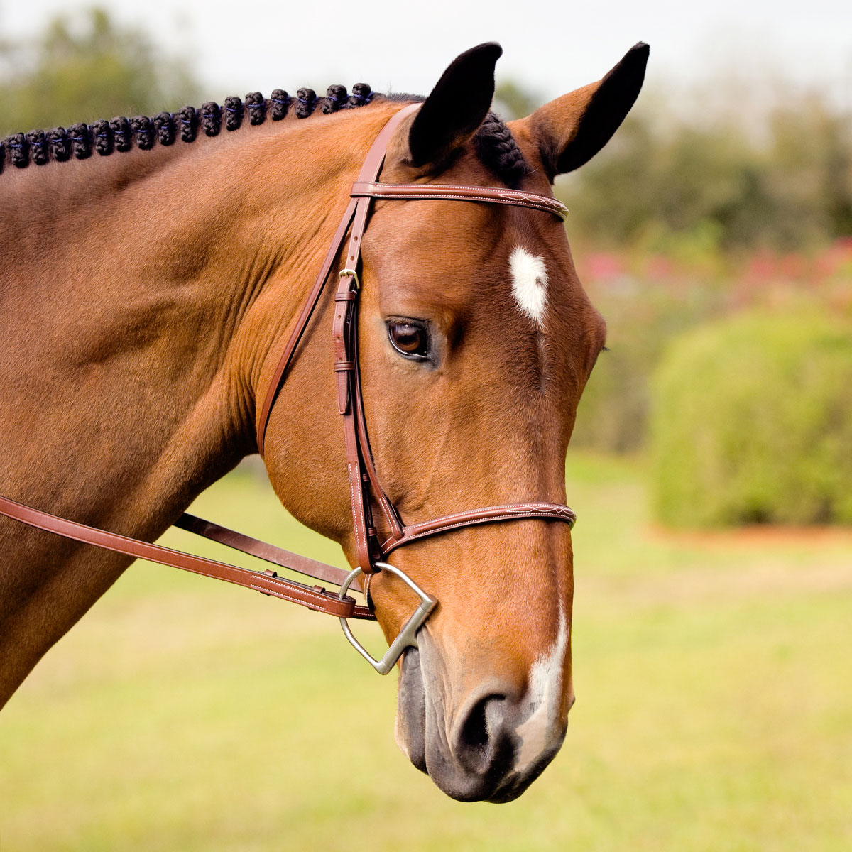Plymouth Basic Fancy Stitch Hunter Bridle by SmartPak