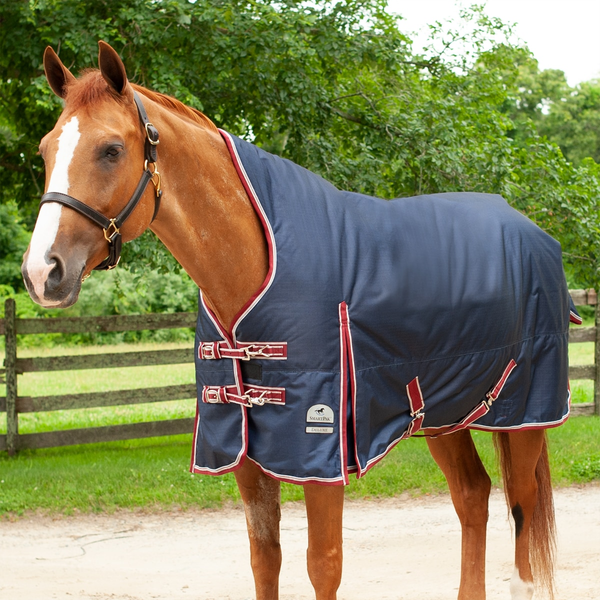 High Neck Thermal Blanket Size 155cm 100g 1200d Horse Blanket Winter Blanket outdoordecke