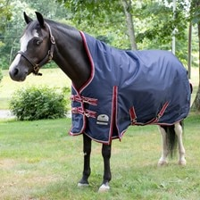 SmartPak Deluxe High Neck Pony Turnout Blanket