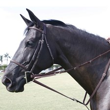 SmartPak German Martingale set