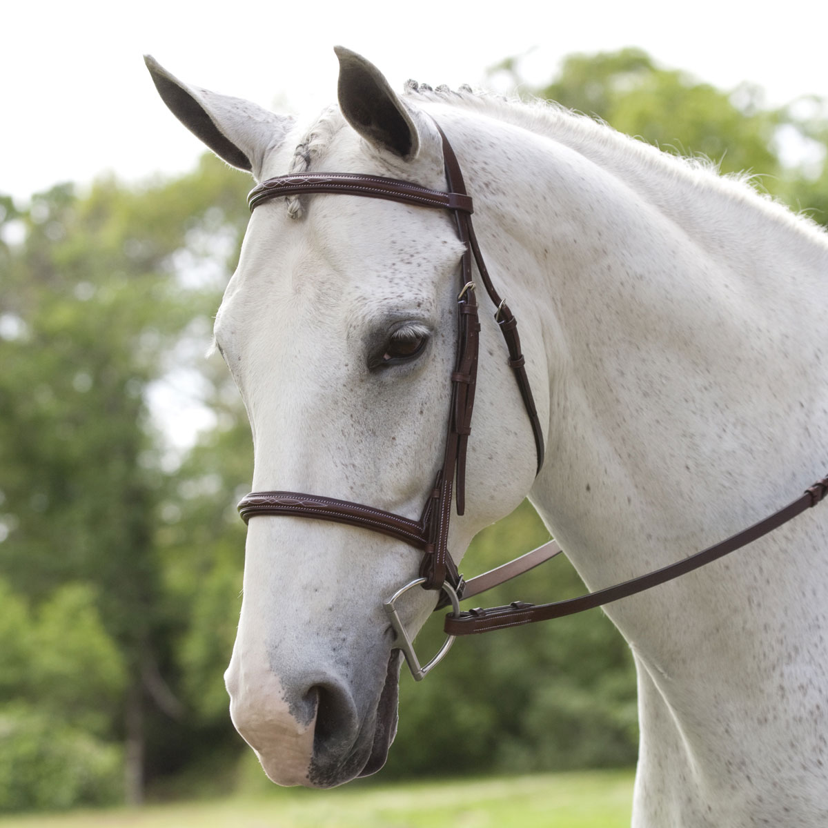 Plymouth Hunter Bridle by SmartPak