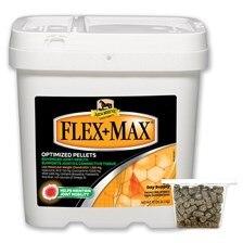 Absorbine Flex + Max