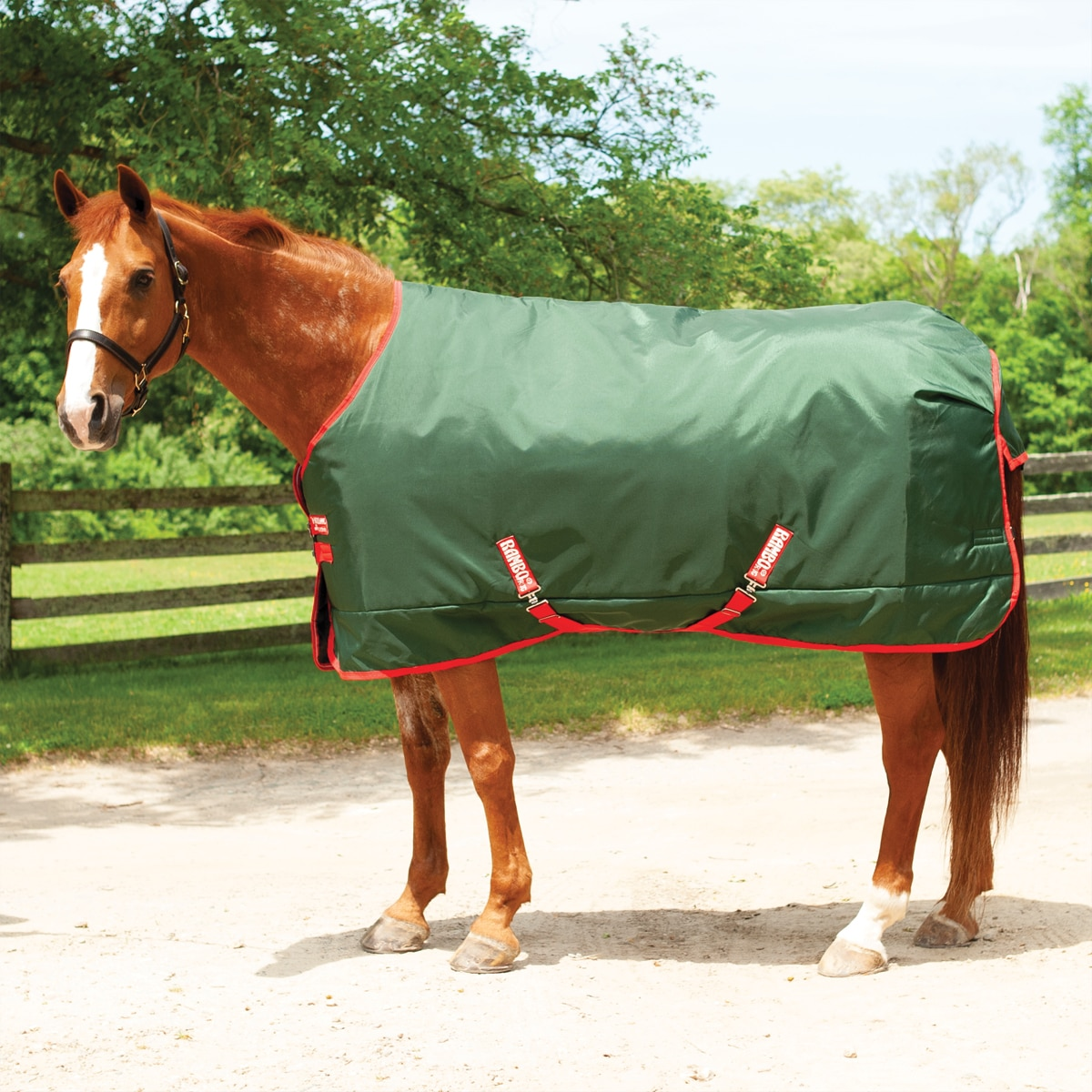 Rambo® Original Turnout Blanket