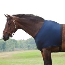 Stretchies Shoulder Guard