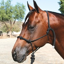 Professional's Choice Clinician Halter