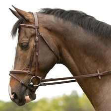 Plymouth® Flash Bridle by SmartPak
