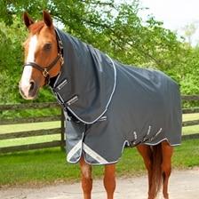 Amigo® 1200D Bravo 12 Original Turnout Blanket